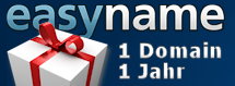 Easyname Weihnachtsaktion