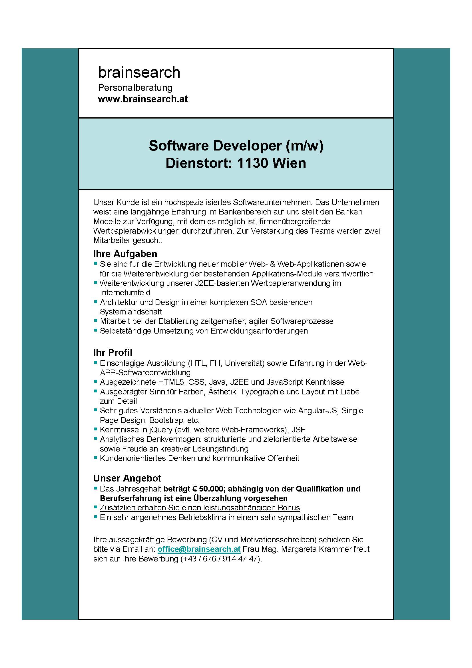 inserat karriere software developer